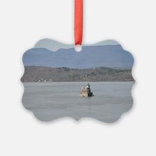 DSC_0051poster Ornament