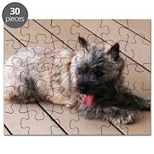 tiredrec Puzzle