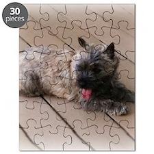 tiredsqu Puzzle
