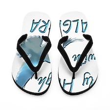 algebra Flip Flops