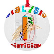 Dialysis Dietician 2011 Ornament