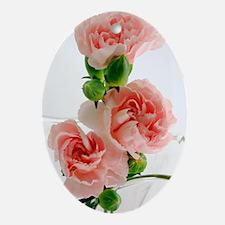PinkCarnations_slider Oval Ornament