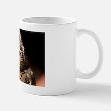 (6) Burrowing Owl Profile Mug