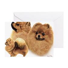 Pomeranian Multi Greeting Card