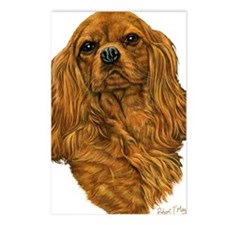 Cavalier Ruby Postcards (Package of 8)