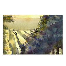 vineyard Postcards (Package of 8)