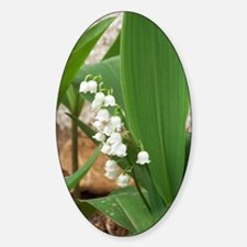 Lily of the Valley Sticker (Oval)