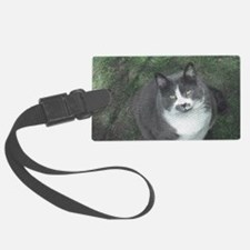 Big Kitty Luggage Tag