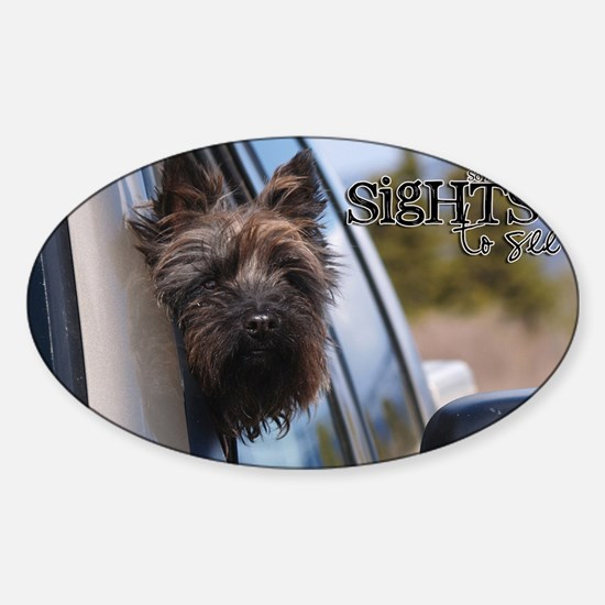 SpikeCar Sticker (Oval)