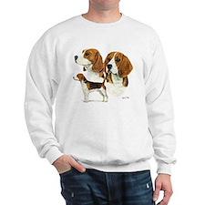 Beagle Multi Sweatshirt