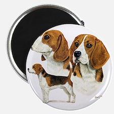 Beagle Multi Magnet