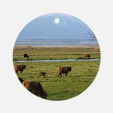 Highland Cattle near Loch Leven 9T0 Round Ornament