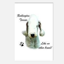 Bedlington Breed Postcards (Package of 8)