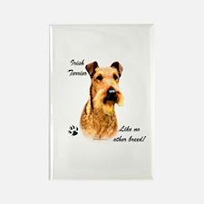 Irish Terrier Breed Rectangle Magnet