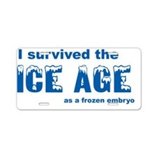 Ice Age Aluminum License Plate