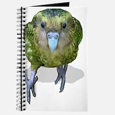 sinbad the kakapo Journal