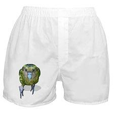 sinbad the kakapo Boxer Shorts