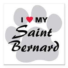 "saint-bernard Square Car Magnet 3"" x 3"""