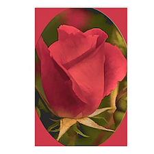 RoseFramedRed_5X7 Postcards (Package of 8)