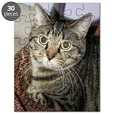 annie 5.13.11 Puzzle