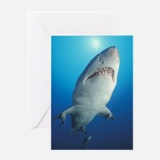 Shark with pups Greeting Card
