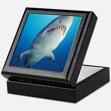 Shark with pups Keepsake Box