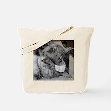 william 5.13.11 Tote Bag