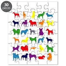 Dark-Rainbow Puzzle
