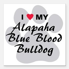 "Alapaha Blue Blood Bulld Square Car Magnet 3"" x 3"""