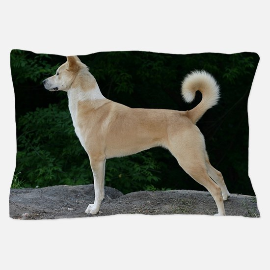 canaan dog full second Pillow Case