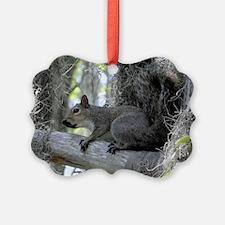 Alabama Squirrel DD Ornament