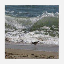 KDH_Bird_Wave_16x20_withCopyright Tile Coaster
