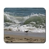 North carolina shore Mouse Pads