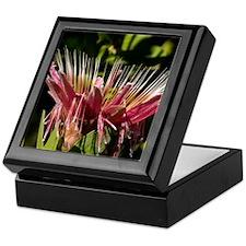 Protea01 Keepsake Box