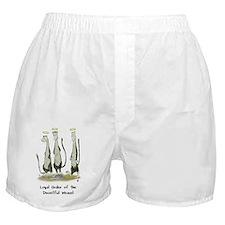 weasel_LIGHT Boxer Shorts