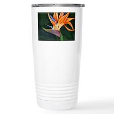 Bird of Paradise (Oil) Travel Mug