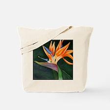 Bird of Paradise (Oil) Tote Bag