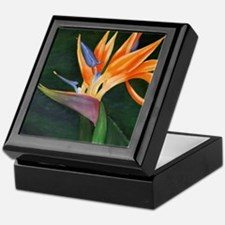 Bird of Paradise (Oil) Keepsake Box
