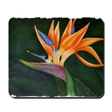 Bird of Paradise (Oil) with frame Mousepad