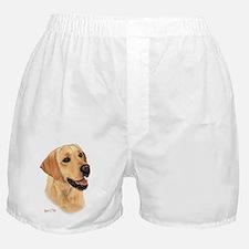 Yellow Lab 2 Boxer Shorts