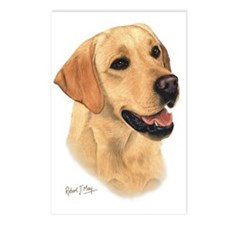 Yellow Lab 2 Postcards (Package of 8)