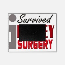 isurvived-kidney Picture Frame