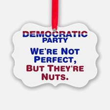 Democrats: We're Not Perfect, But They're Nuts Pic