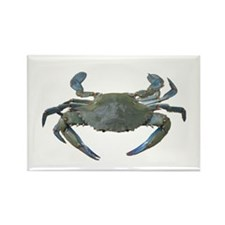 Chesapeake Bay Blue Crabs Rectangle Magnet