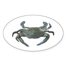 Chesapeake Bay Blue Crabs Oval Decal