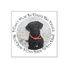 "Black Labrador Retriever  B Square Sticker 3"" x 3"""