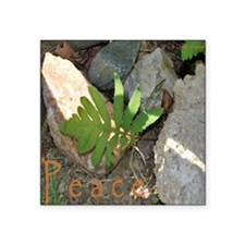 "Peace_rocks n leaf_5x5 Square Sticker 3"" x 3"""