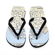 GexM5 Flip Flops