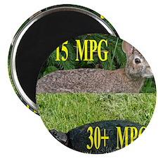 MPG5x10F Magnet
