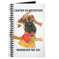 NF Center of Attention Journal